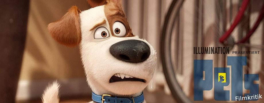 Pets - Filmkritik