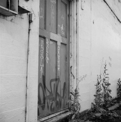 Ugly Door