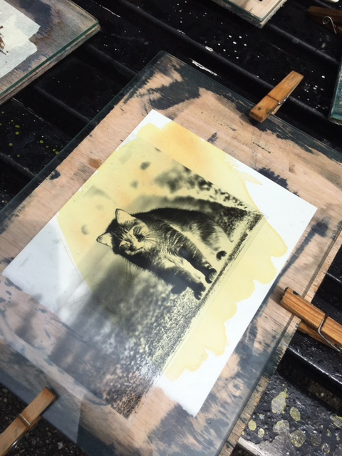 Vandyke Brown Printing