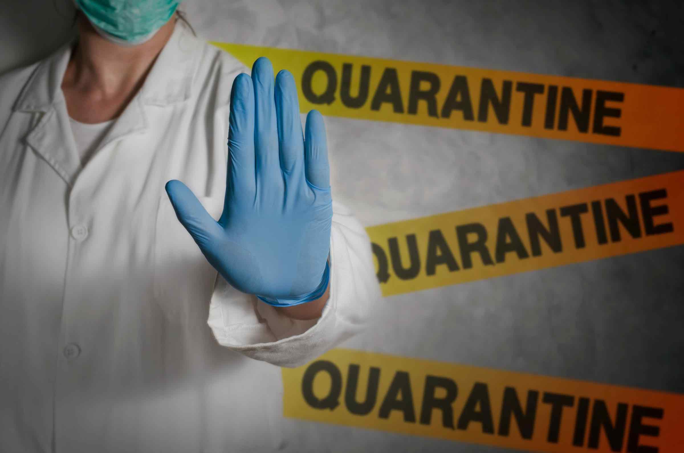 The Best Quarantine Memes Explained By Quarantine Meme Houses Vox