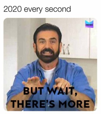 2020 memes: The embodiment of this dumpster fire of a year – Film Daily