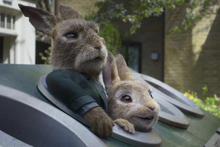 Peter Rabbit 8