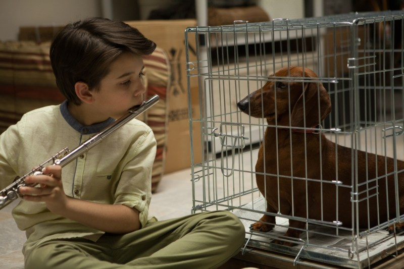 Wiener-Dog – Keaton Nigel Cooke