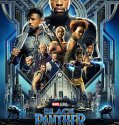 Black Panther (2018) Online Subtitrat HD in Romana