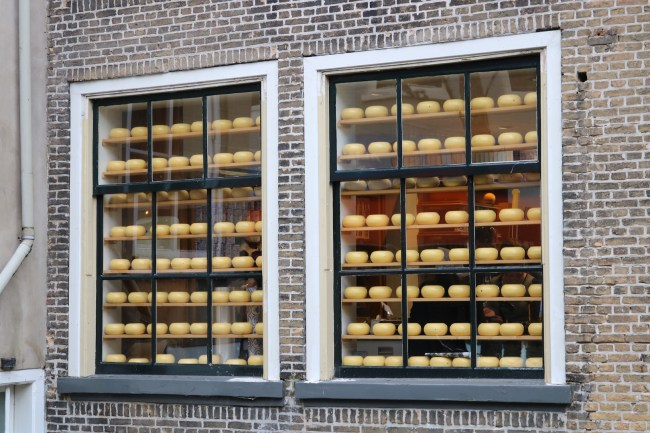 Cheese in windows. #OnlyInTheNetherlands