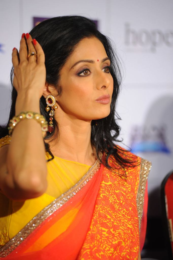 12+ Beautiful Photos of Sridevi 3
