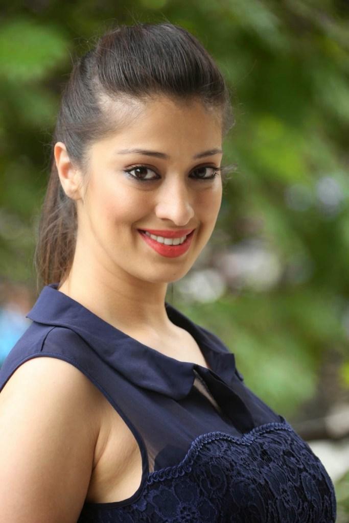 46+ HD Photos of Rai Lakshmi 115