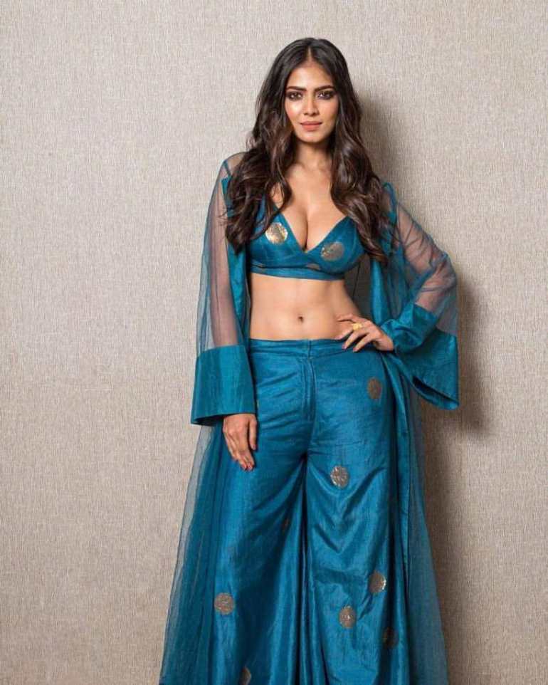 117+ Stunning Photos of Malavika Mohanan 166