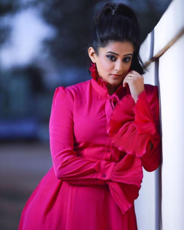 51+ Stunning Photos of Priyamani 7