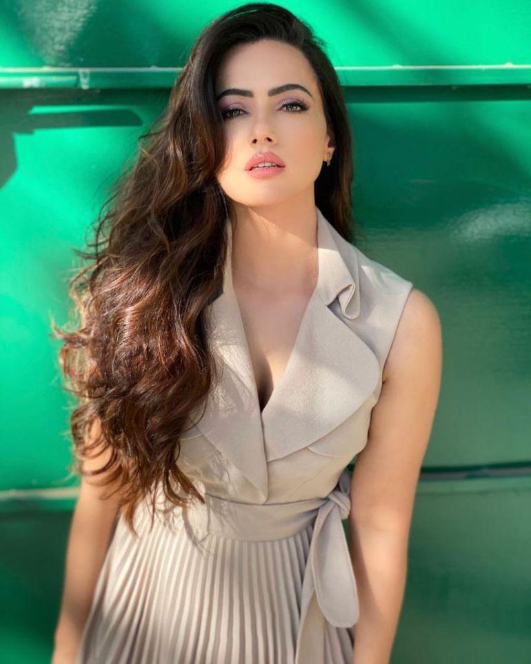 43+ Lovely Photos of Sana Khan 34