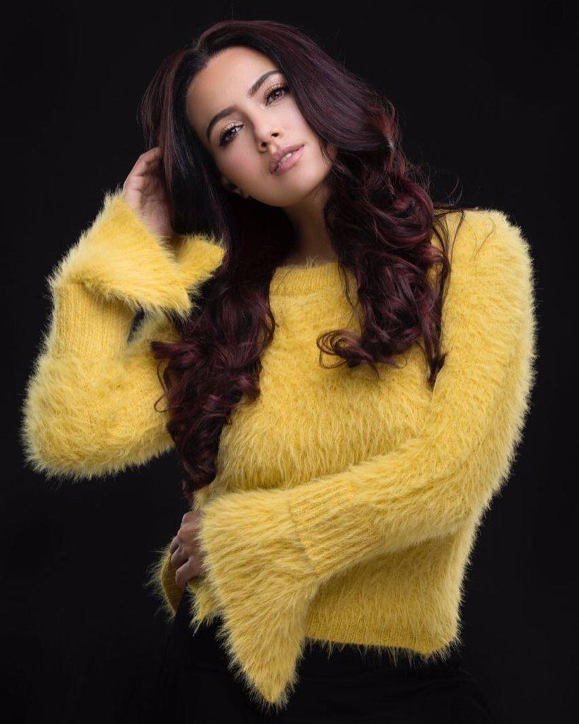 43+ Lovely Photos of Sana Khan 38