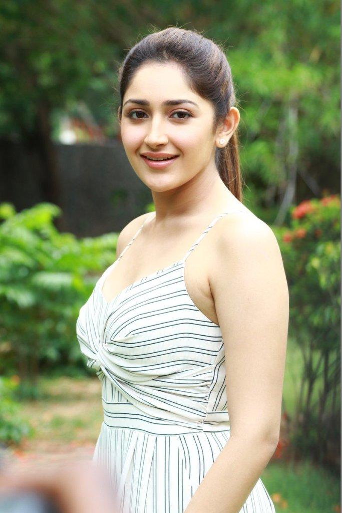 72+ Charming Photos of Sayesha Saigal 34