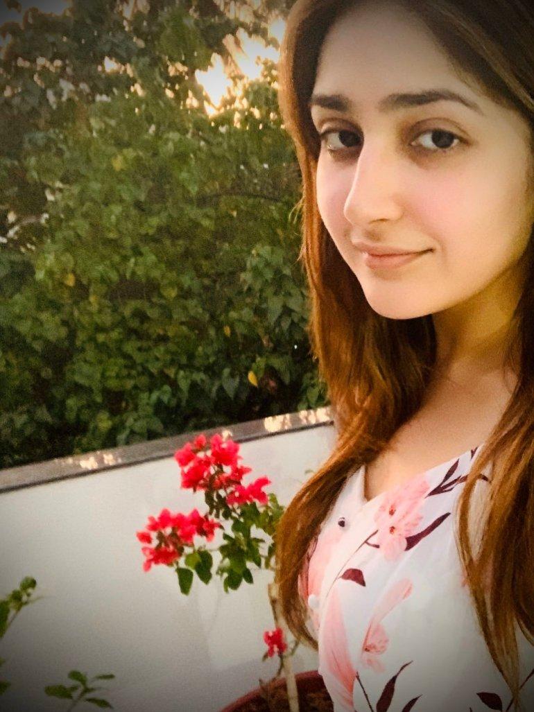 72+ Charming Photos of Sayesha Saigal 136