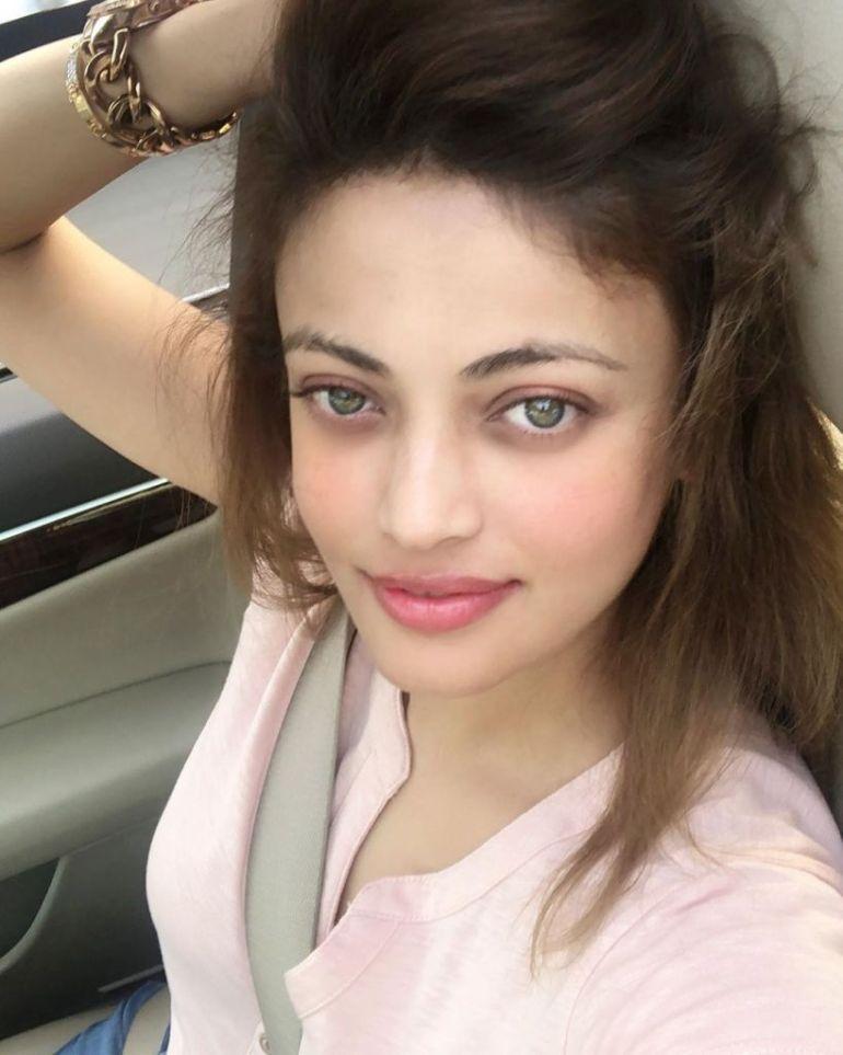 43+ Gorgeous Photos of Sneha Ullal 18