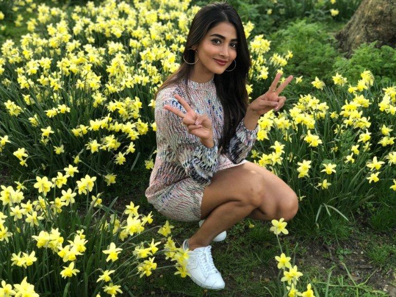 129+ Gorgeous Photos of Pooja Hegde 124