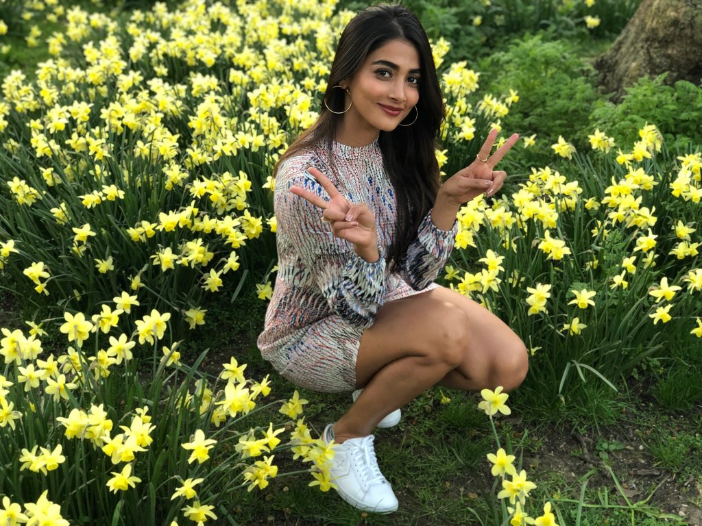 129+ Gorgeous Photos of Pooja Hegde 41