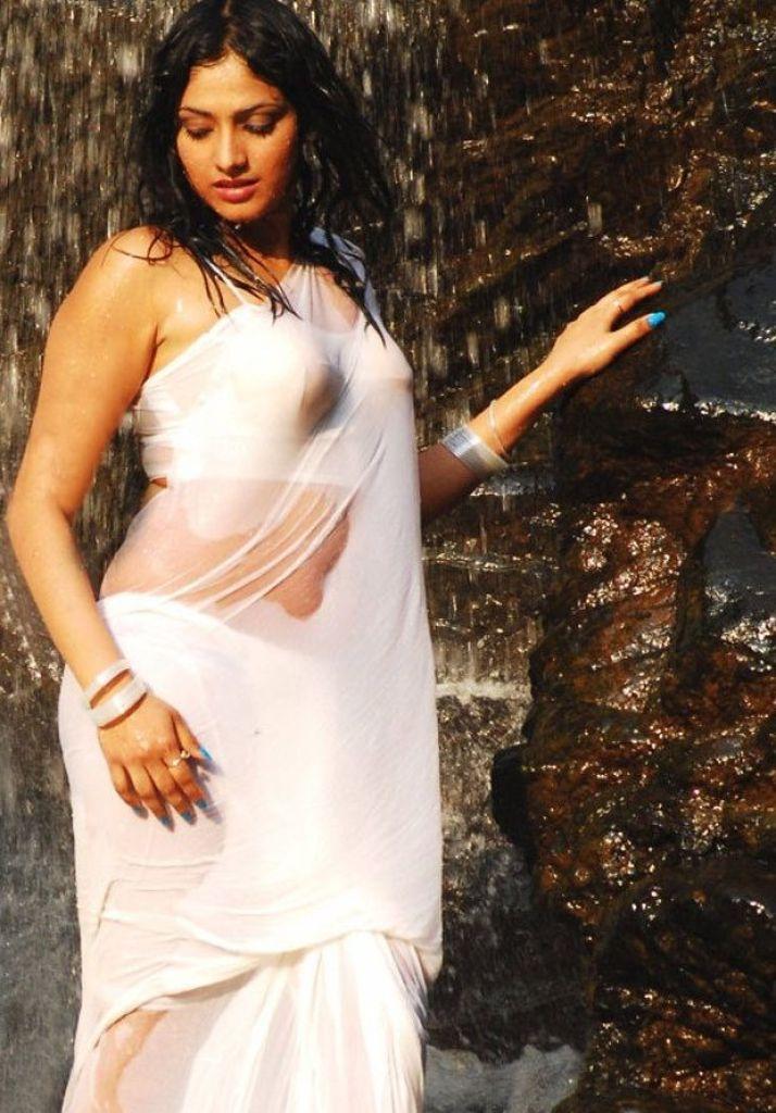 50+ Stunning Photos of Haripriya 24