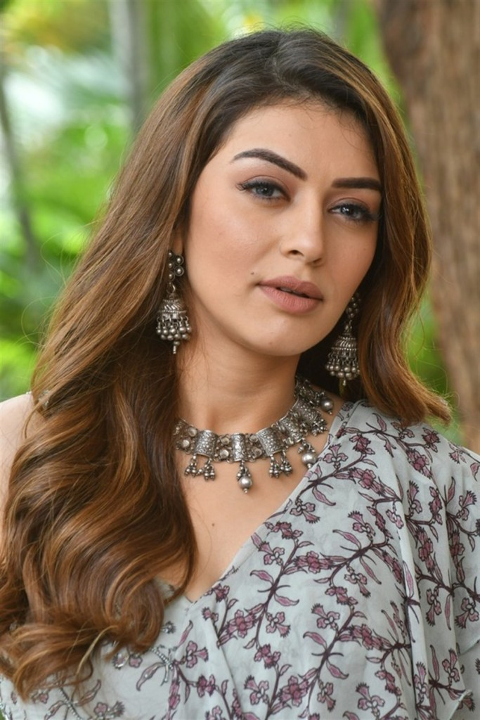 Check out these 33+ photos of Hansika Motwani 89