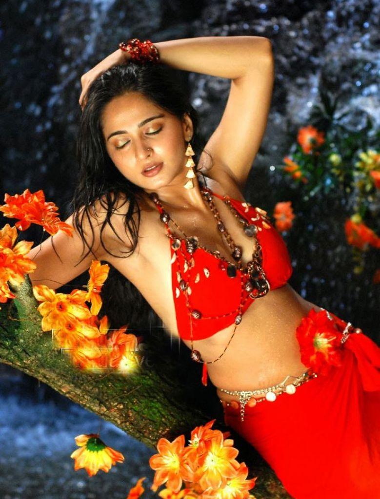 126+ Stunning HD Photos of Anushka Shetty 119