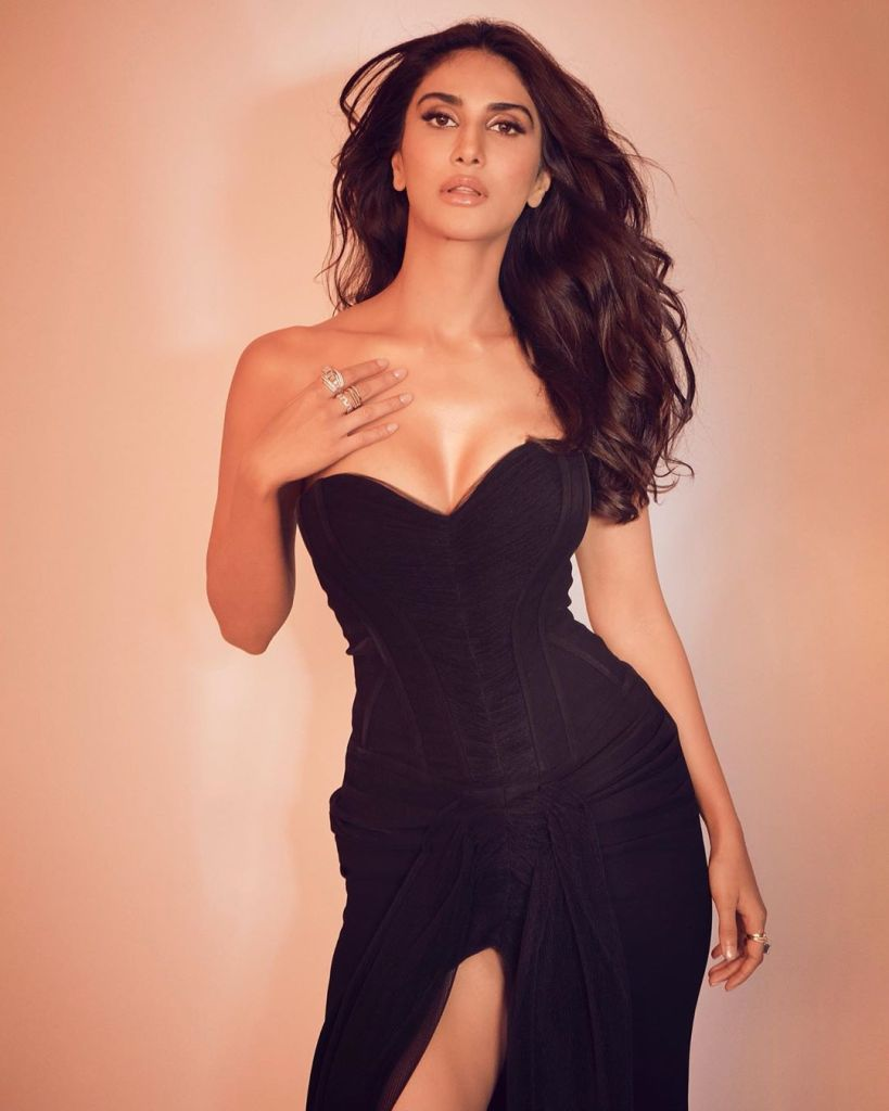 36+ Stunning Photos of Vaani Kapoor 112