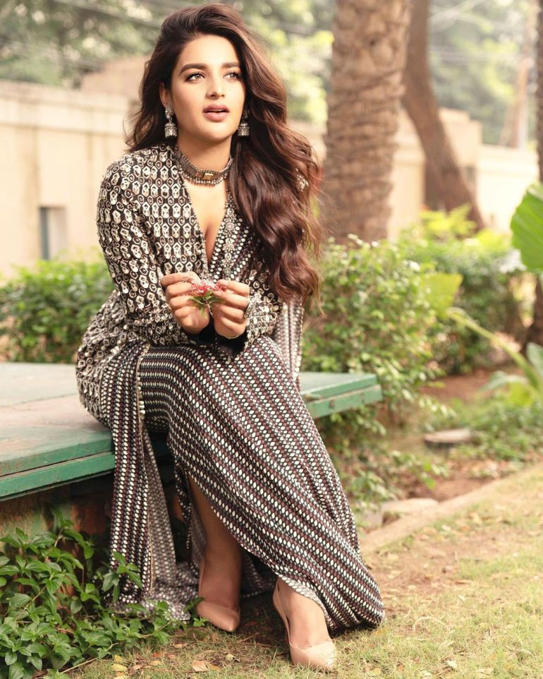 Nidhhi Agerwal Wiki, Age, Biography, Movies, and Beautiful Photos 20