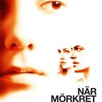 När mörkret faller ( 2006 Sverige )