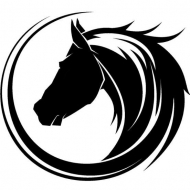 Dark Horse Productions LA