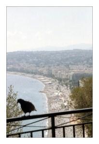 Leica IIIg, Summitar 50/2, Kodak Portra 400