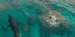 gallery-1466777229-the-shallows-shark-blake-lively