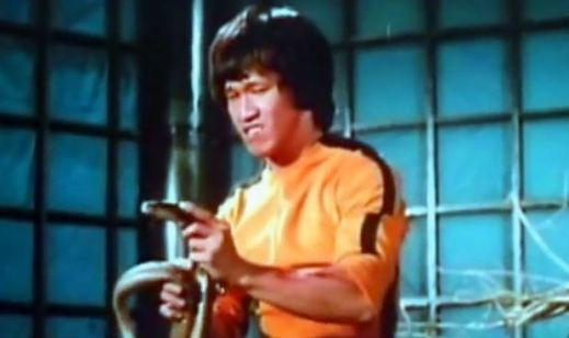 Enter the Game of Death Brucesploitation