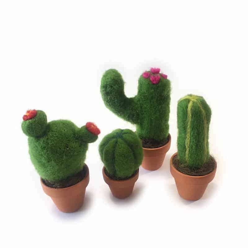 gefilzter Kaktus