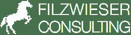 Filzwieser Consulting Logo