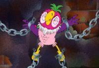 попугай - наркокурьер
