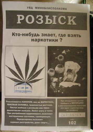 ищут наркотики