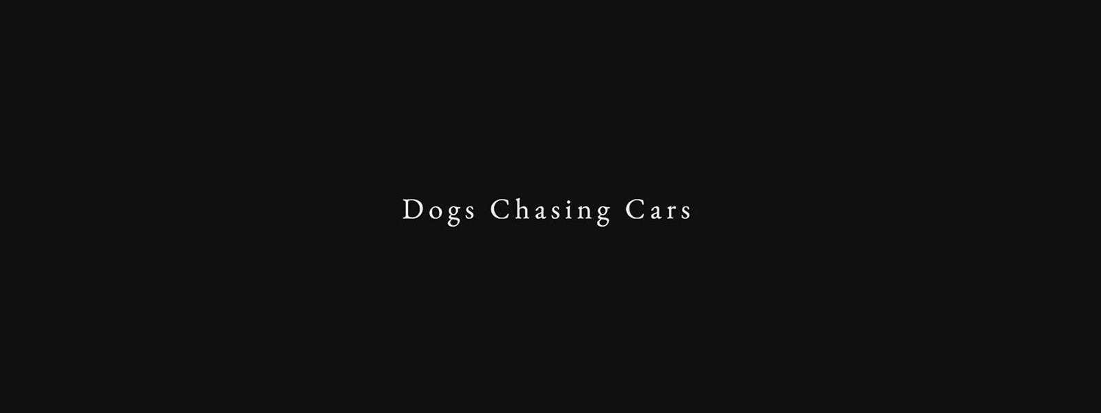 dogs chasing cars