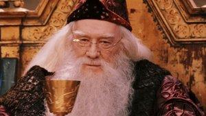 who was albus dumbledore 1567691647 300x169 - The Department of Magical Avenging: It's Levi'Avengaar, Not Levi'Avengar!