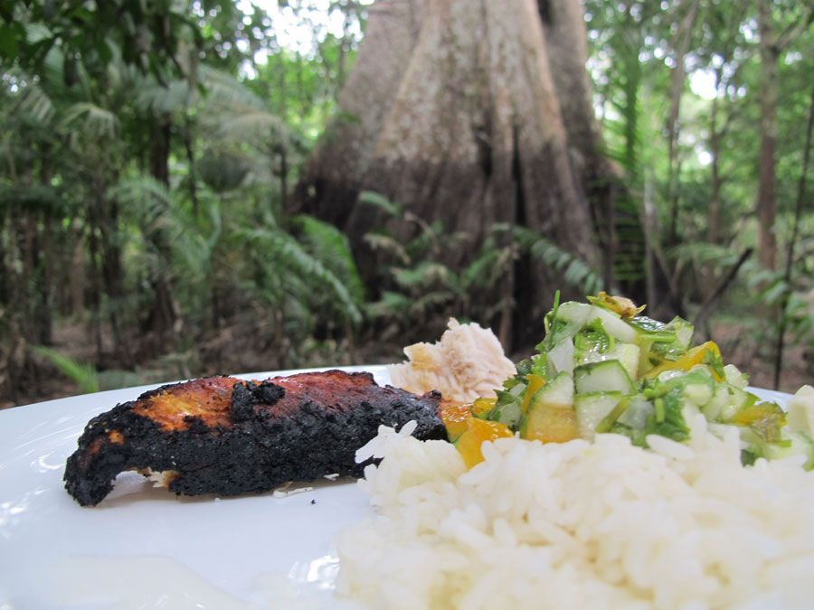 Food-in-the-Amazon