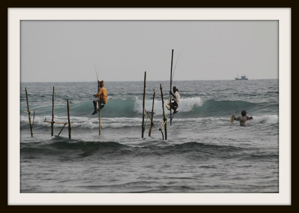 stilt-fishing-002