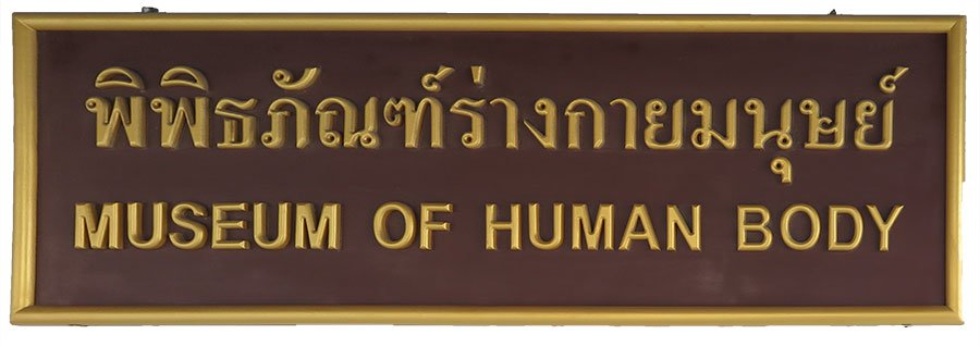 Human Body Museum in Bangkok