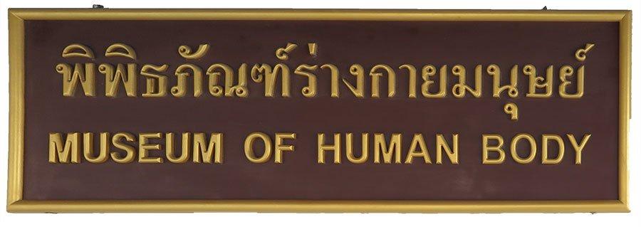 Human body museum Bangkok