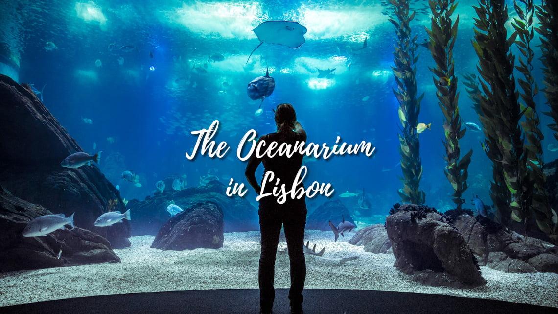 Oceanarium in Lisbon