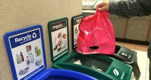 This is the first week for a new organics recycling program at the Minnesota Department of Transportation's cafeteria. (Staff photo: Chris Steller)