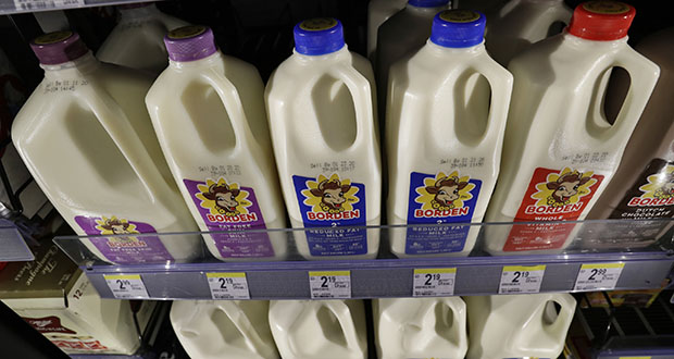 Borden milk rests on a shelf in a cooler Jan. 6, 2020, in Richmond Heights, Ohio. Borden Dairy Co. filed for bankruptcy protection, the second major U.S. dairy to do so in as many months. (AP Photo: Tony Dejak)