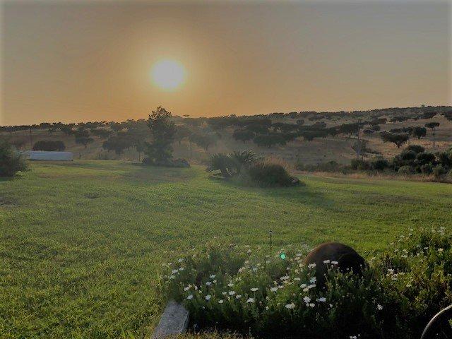 Portugal zuiden twee weken roadtrip kosten planning