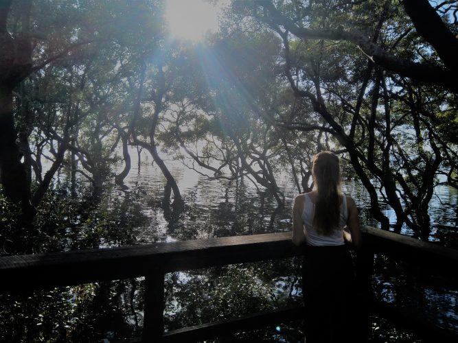 Zonneboiler mangrove zon op mijn gezicht