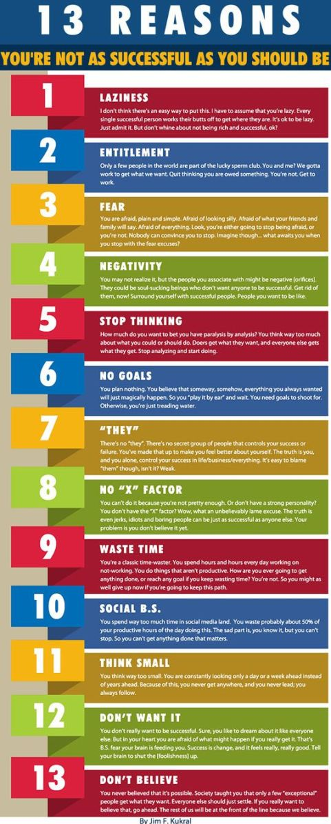 Infographic - 13 reasons you are not successful