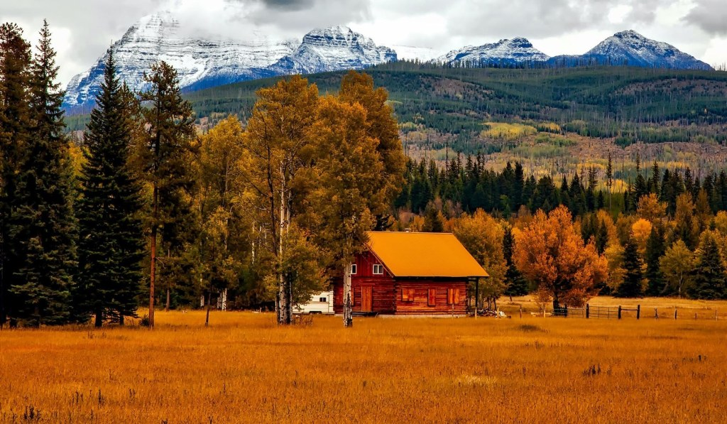 Top Ventures for Entrepreneurs and Investors in Telluride