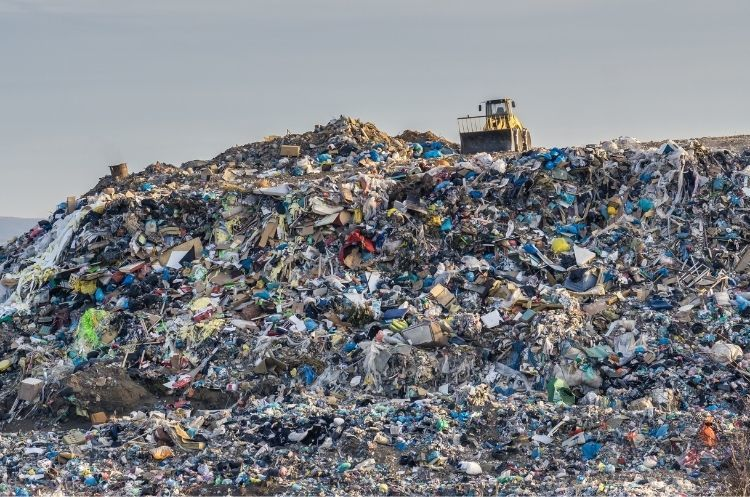 Why Companies Illegally Dump Waste