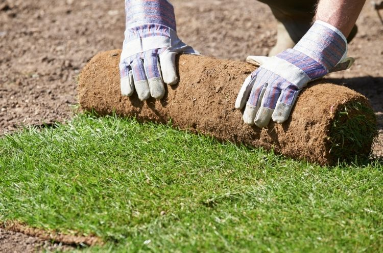 New Services Your Landscaping Company Can Offer