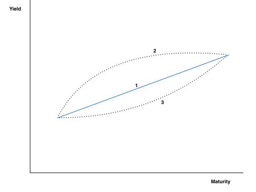 Curve_Curvature.001